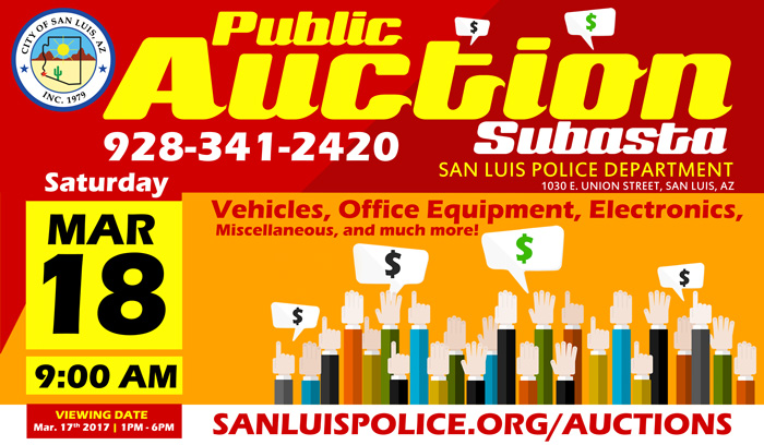 Public Auction Flyer